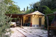 Immobili in vendita Riparbella Pisa Houses and properties for sale Riparbella Pisa